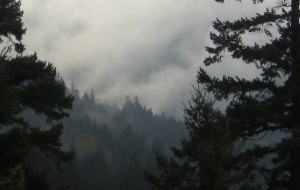atop-the-misty-mountains