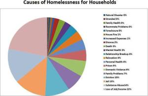 Causes-of-Homelessness (1)